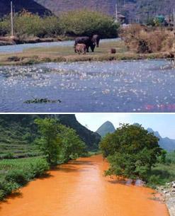 Dòng suối Tịnh Tây, Quảng Tây – trước khi khai thác bauxite (hình trên) và sau (hình dưới).