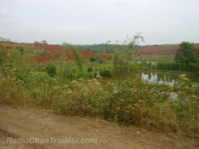 Đất sau khi khai thác đang bị hóa ra màu vàng đỏ